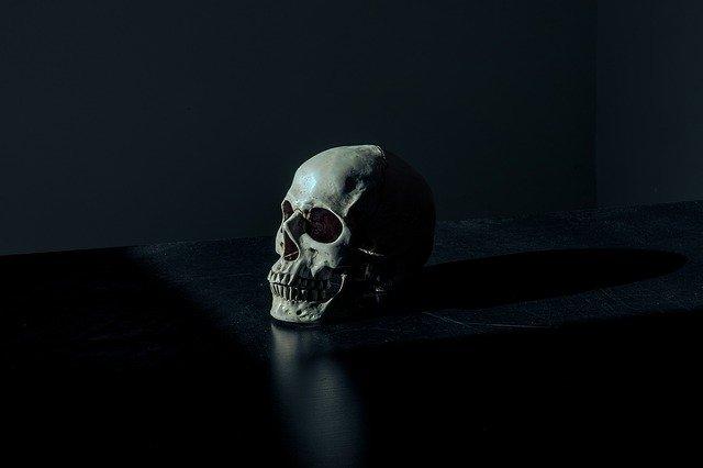 Lebka človeka.jpg
