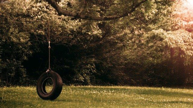 Pneumatika zavesená na lane, na strome